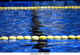 Photography Olympic Swimming Pool Underwater Office Decor Ideas For Men With Swim Lane Stock Photos Images Alamy