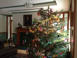 Christmas Tree Shop Erie Pa by Witness Tree Lynda V Mapes Website