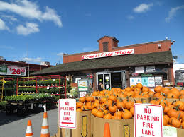 Pumpkin Picking Farms In Maryland by Pumpkins Country Boy Urban Farm Stand In Glenmont S