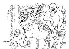 African Animal Coloring Pages Free