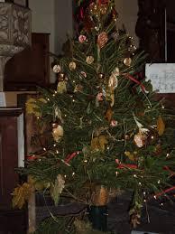 Christmas Tree Saplings Ireland by Activities