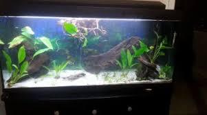 aquarium 250l absence du renfort lors de l achat
