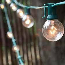 25 bulb classic glass globe in string lights green yard