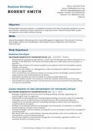 Business Developer Resume Sample
