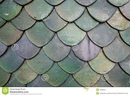 brava shake plastic terracotta roof tiles sheets thai royalty free