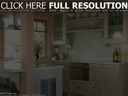 Samsung Counter Depth Refrigerator Home Depot by Samsung Counter Depth Refrigerators Cabinet Ideas To Build