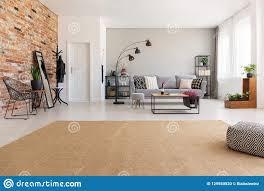 beige teppich im modernen wohnzimmer innen mit grauer