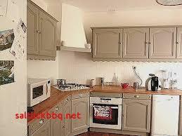cuisine fonctionnelle aménagement conseils plans et renovation cuisine peinture pour idees de deco de cuisine fraîche