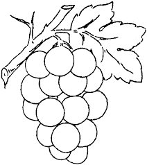 Free Printable Coloring Pages Grapes Grape Vine Page