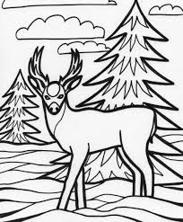 Deer Coloring Page Pages To Download And Print For Free
