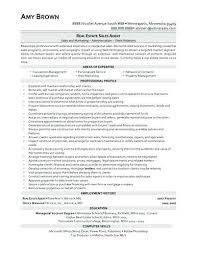 Real Estate Resume Skills Agent Example Good Template Home