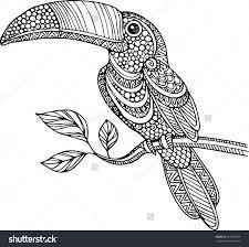 Toucan Coloring Page DiyWordpressme