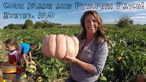 Pumpkin Patch Oklahoma 2015 by Playing At The Exeter Mo Corn Maze And Pumpkin Patch Youtube