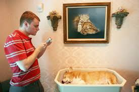 L A Unleashed Funerals for pets a growth industry