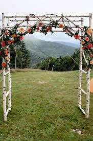 A Birch Wedding Arbor For An Outdoor Country Rusic