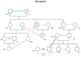 Emotional Relationship Genogram Template