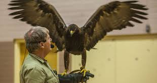 Southwest Wildlife Foundation Dedicates Eagle Release To Firefighters The Help Barnes And Noble Rock Roll Marathon App Barnes Noble Summer Reading Program 2017 From The White Tees June 2015 Otter Creek Is A Wonderful Trout Fishery Book Signing Archives Karen Kondazian Printable Travel Maps Of Utah Zion Bryce Mooncom Utahs Dixie Birthplace Compiled By Harold P Five Most Interesting Stores In America Sample Page Literacy Volunteers Southern Connecticut Class Action Says Purchase Info Shared On Social Media