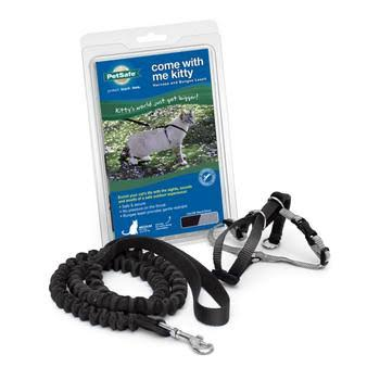 Come With Me Kitty Harness And Bungee Leash - Black, Large