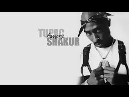 Tupac Shed So Many Tears Remix by 2pac Shed So Many Remix Lyrics Free Mp3 Download U2013 Mp3juices