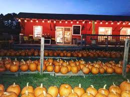 Pumpkin Patch Hayrides Lancaster Pa by 8 Best Pumpkin Patches In New Hampshire To Visit In 2016