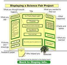 Template Best 25 Science Fair Display Board Ideas On Pinterest