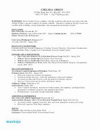 Criminal Justice Resume Objective Examples College Best