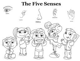 Five Senses Coloring Page 1 Sheet Free Pages 5