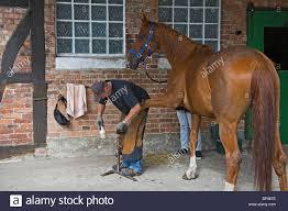 100 Farm House Tack Horse Smith Fixes Horseshoe Farm House Stock Photo