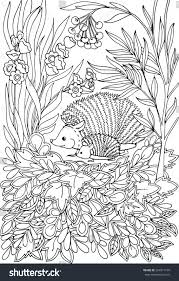 Coloring Book For Adult And Older Children Page With Lovely Mother Hedgehog Her