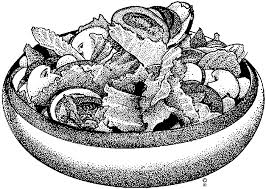 Salad clip art wikiclipart