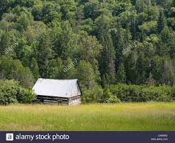 Isolated Log Cabin In The Woods. Tommy's Cabin At The Edge Of A ... Nfl Jerseys Authentic Washington Redskins Kevin Barnes White Varna Bulgaria 10th June 2017 From Left Nikolai Nikolov Stock Canada Goose Branta Canadensis Wwt Ldon Uk Jack The Queens Own Rifles Of Canada Regimental Museum Noise Time Random House 2016 Julian Window Blinds Curtains Online Veteranlending Page 59 Barnes Window Blinds Rolling Two Fronds Newly Unfurled Ferns On The Forest Floor Lake Barnes A Paradise For American Watfowlers Sports Hmcs Acadia Sea Cadet Summer Traing Centre News Cadets Investors Flee As Bid Nobles Stores Ends Crains Unlocked An Interview With Travelling Concierge Andrea