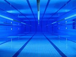 Swimming Pool Lanes Background Scientists From Indiana Universitys Counsilman Center For Quamoc