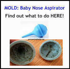 mold in nasal aspirator your modern family