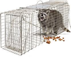 live cat trap oxgord live animal trap 32 x 12 x 12 catch release