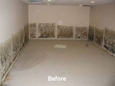 Wet Basement Waterproofing South Dakota Wyoming