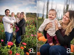 Pumpkin Patch Portland by Portland Baby Family Photography U2014 Alyson Levy Photography