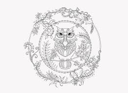 ENCHANTED FOREST 4 Owl Coloring PagesColoring BooksAdult