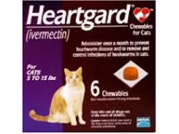 heartgard for cats heartgard plus by merial