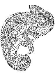 Animal Mandala Coloring Pages Pdf Zoo Preschool Sheets Full Size