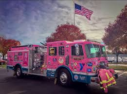 100 Pink Fire Trucks Chapter One 2019 Action At Last Ila Mathur Medium