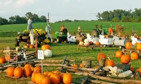 Fleitz Pumpkin Farm Groupon by Pumpkin Farm Coupons More Info