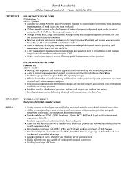 Download Sharepoint Developer Resume Sample As Image File