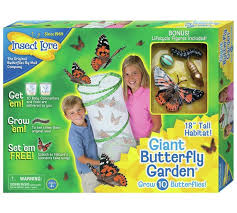 Buy Insect Lore Giant Live Butterfly Garden at Argos Your
