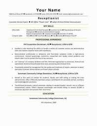 Best Skills For Resume Of Examples Typing Inspirational A