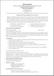 Resume Sample Sales Executive Templates