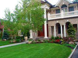 Landscape. Nice Front Of House Landscaping Ideas: OLYMPUS DIGITAL ...