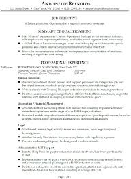 Professional Business Resume Objective