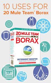 46 best Borax Life images on Pinterest