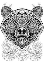 Zentangle Stylized Bear Face On Flowers Hand Drawn Ethnic Animal For Adult Coloring Pages