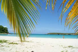 104 W Hotel Puerto Rico Vieques Retreat Spa Island Specialty Resort Reviews Isla De Tripadvisor